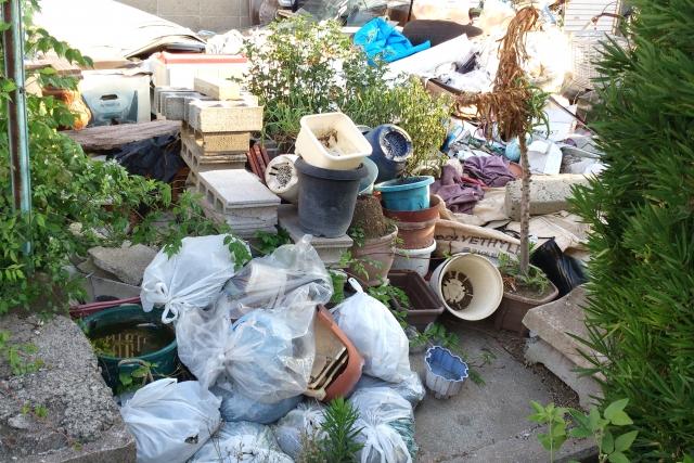 ゴミで放置してあるお庭